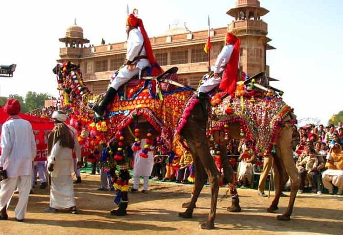 Camel Festival Bikaner