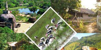 Ecotourism in Sri Lanka