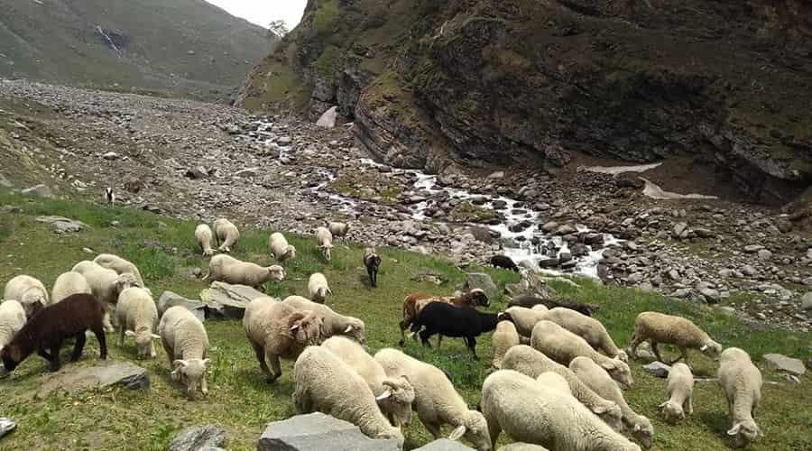 Spiti Valley during Monsoon Season