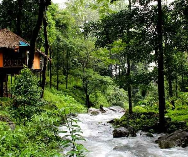 Wayanad in Monsoon