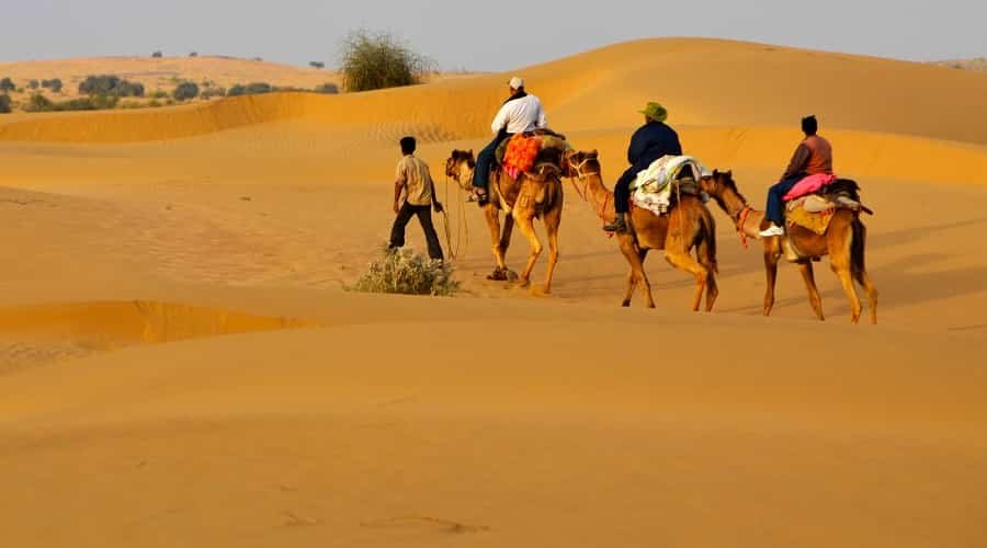 Desert Safari in Bikaner