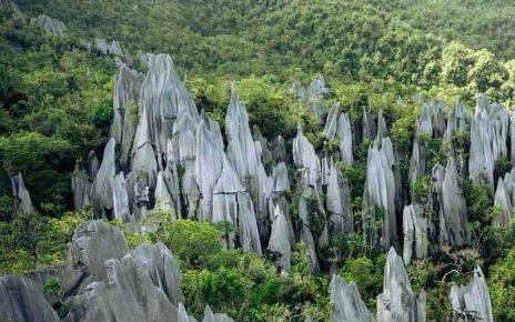 Mulu National Park, Borneo, Malaysia