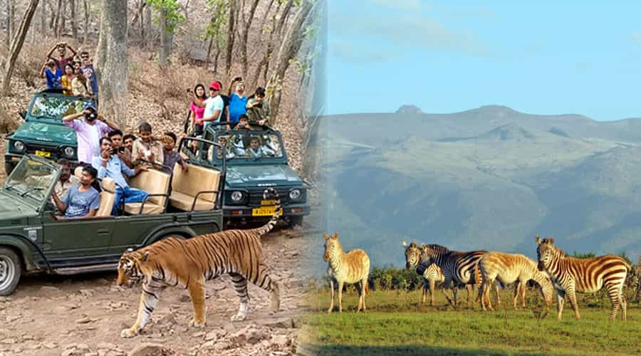 Kenya Wildlife Reserve and Ranthambore National Park