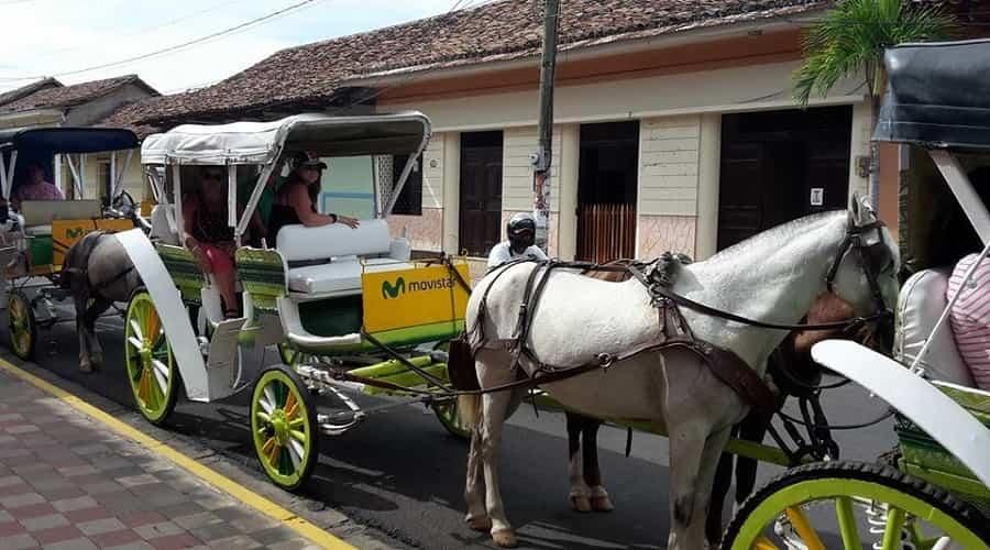 horse and carriage ride around Granada